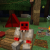 Profile picture of Commandcraft